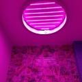 Подготовка для засветки светорассеявающего стекла